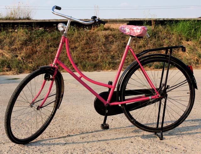 Bicicleta olandeza